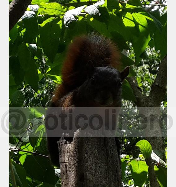Visita Jardin Ecologico_25