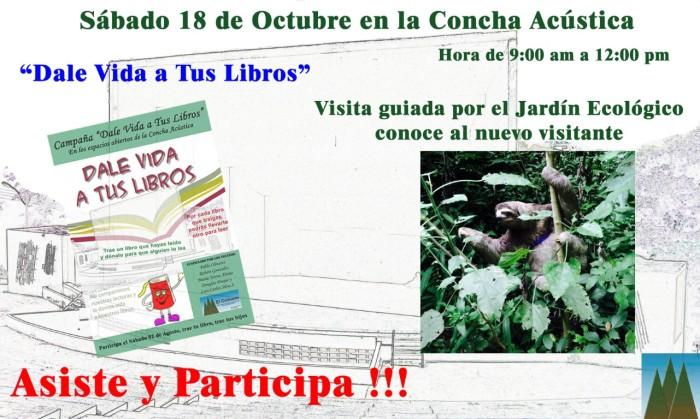 Concha Acustica 18O (Medium)