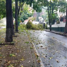 Final Avenida Caurimare | Foto:  @Imel1203
